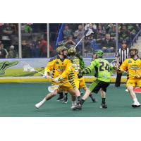 Randy Staats of the Georgia Swarm against the Saskatchewan Rush